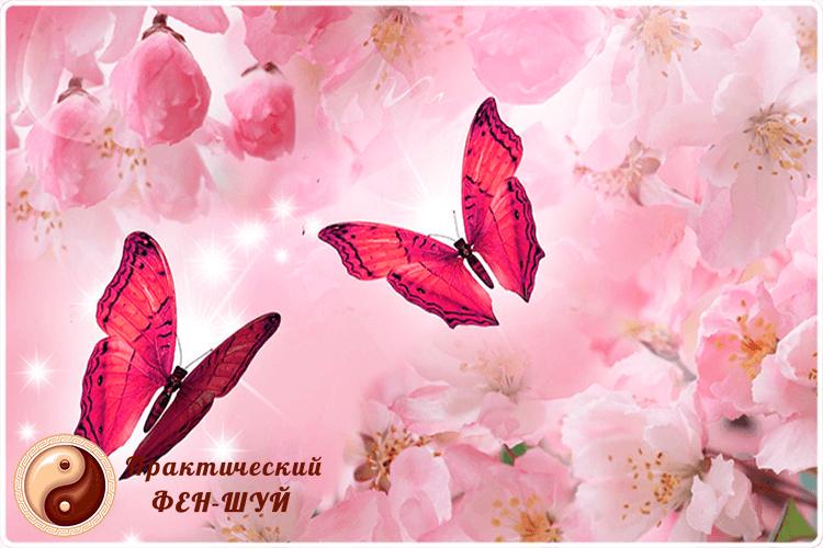 фен-шуй бабочки