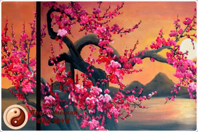 сакура картина